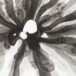 Elina Katara | Screwup II | 2013 | ink on paper