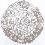Elina Katara | Mandalas | 2010 | household dust and glue on acrylic sheet